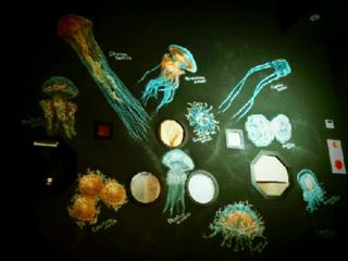 松島水族館クラゲ館壁画.png